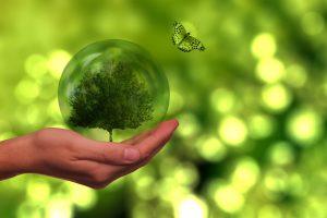 OZE – Odnawialne Źródła Energii